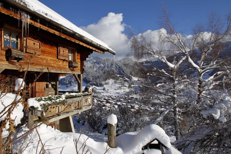 chalets de montagne france montagnes site officiel des stations de ski en france. Black Bedroom Furniture Sets. Home Design Ideas