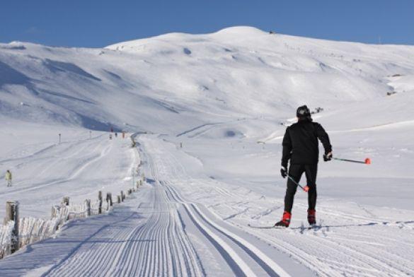 Location Appartement Au Ski